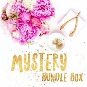 Tops - Mystery bundle box HUGE FINAL SALE Surprise box